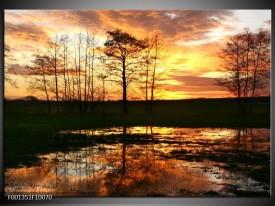 Glas schilderij Natuur | Geel, Zwart, Oranje