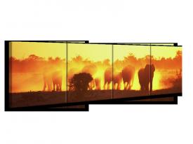 Glas schilderij Olifant | Geel, Oranje, Bruin | 160x40cm 4Luik