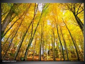 Glas schilderij Bomen | Geel, Groen