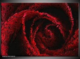Foto canvas schilderij Roos   Rood, Zwart