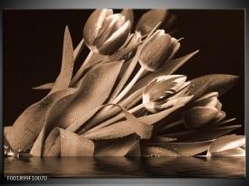 Foto canvas schilderij Tulpen   Sepia, Bruin