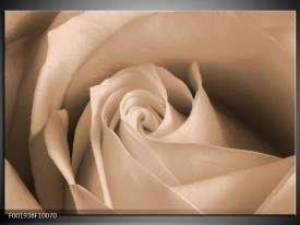 Foto canvas schilderij Roos | Sepia, Bruin