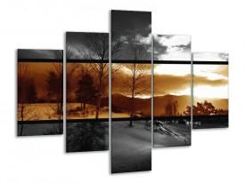 Glas schilderij Natuur | Sepia, Bruin | 100x70cm 5Luik
