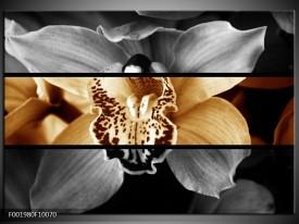 Glas schilderij Orchidee | Sepia, Bruin