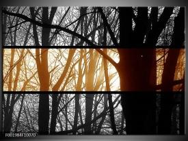 Glas schilderij Natuur | Sepia, Bruin