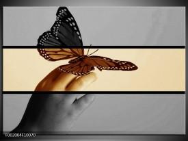 Foto canvas schilderij Vlinder | Sepia, Bruin