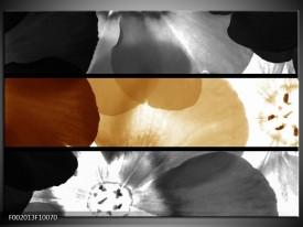 Glas schilderij Bloem | Sepia, Bruin