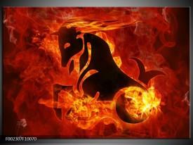 Foto canvas schilderij Paard | Rood, Geel, Oranje