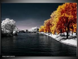 Glas schilderij Natuur | Oranje, Wit, Grijs