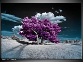 Glas schilderij Natuur | Paars, Blauw, Wit