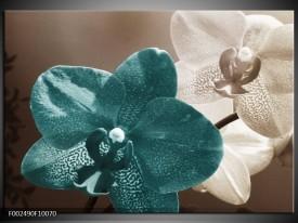 Foto canvas schilderij Orchidee | Blauw, Wit, Grijs
