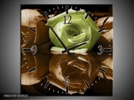 Wandklok op Glas Roos | Kleur: Groen, Bruin | F002535CGD