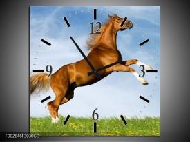 Wandklok op Glas Paard | Kleur: Bruin, Blauw, Wit | F002646CGD