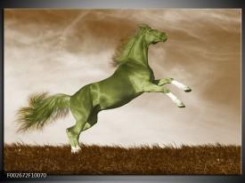Glas schilderij Paard   Groen, Bruin