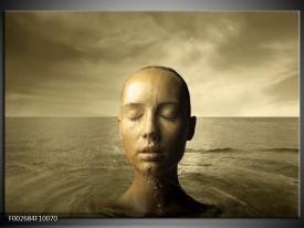 Foto canvas schilderij Gezicht | Grijs, Wit, Bruin