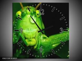 Wandklok op Glas Sprinkhaan | Kleur: Groen, Zwart | F002720CGD