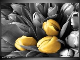 Glas schilderij Orchidee | Grijs, Geel, Zwart