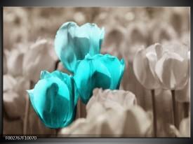 Foto canvas schilderij Tulpen | Blauw, Grijs