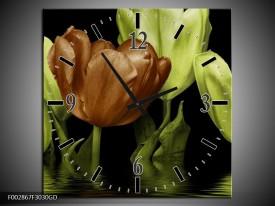 Wandklok op Glas Tulpen   Kleur: Groen, Bruin   F002867CGD