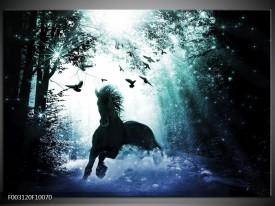 Glas schilderij Paard   Blauw, Zwart, Wit