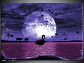 Foto canvas schilderij Natuur | Blauw, Paars, Wit