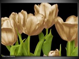 Glas schilderij Tulpen   Goud, Groen, Zwart