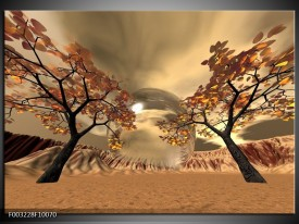 Glas schilderij Natuur | Bruin, Goud, Wit