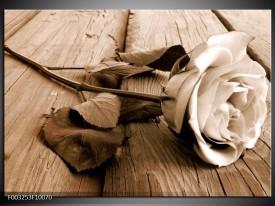 Glas schilderij Roos | Bruin, Sepia, Wit