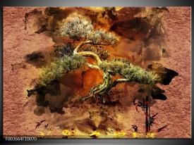 Foto canvas schilderij Bonsai | Groen, Bruin, Zwart