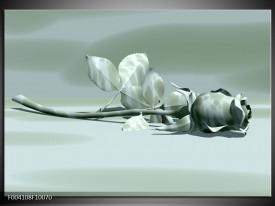 Foto canvas schilderij Roos | Grijs, Wit