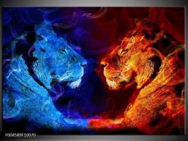 Foto canvas schilderij Leeuw | Rood, Blauw, Rood