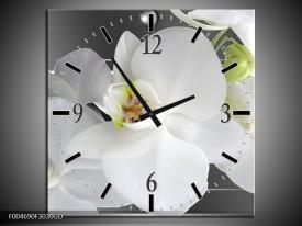 Wandklok op Glas Orchidee   Kleur: Grijs, Wit   F004690CGD