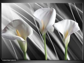 Glas schilderij Bloem | Grijs, Wit, Groen