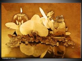 Glas schilderij Orchidee | Bruin