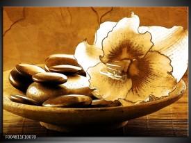 Foto canvas schilderij Bloem | Bruin