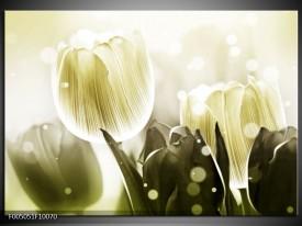 Glas schilderij Tulp   Wit, Grijs
