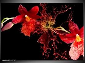 Glas schilderij Art | Rood, Zwart