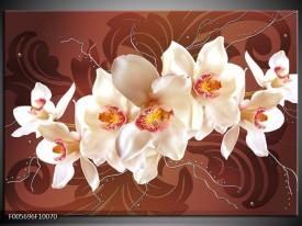 Glas schilderij Orchidee   Bruin, Crème