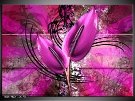 Foto canvas schilderij Anthurium | Paars
