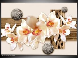 Foto canvas schilderij Orchidee | Creme, Bruin