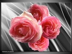 Glas schilderij Roos | Grijs, Roze