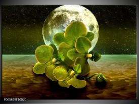 Glas schilderij Orchidee | Groen, Goud, Bruin