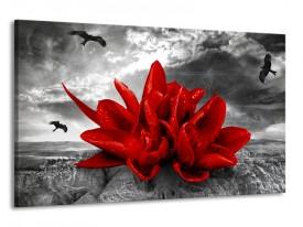 Glas schilderij Lelie | Rood, Grijs | 120x70cm 1Luik