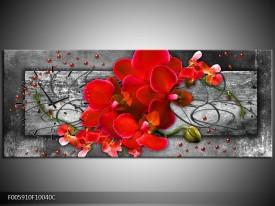Klok schilderij Orchidee | Rood, Grijs | 100x40cm 1Luik