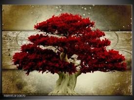 Foto canvas schilderij Boom | Rood, Bruin
