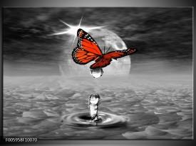 Glas schilderij Vlinder | Rood, Grijs, Wit