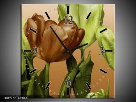 Wandklok op Glas Tulp | Groen, Bruin, Wit | F005979CGD