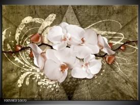 Foto canvas schilderij Orchidee | Goud, Wit, Bruin