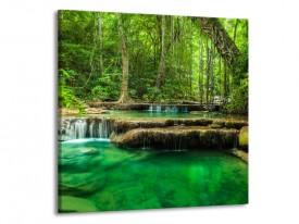 Glas schilderij Natuur | Groen | 70x70cm 1Luik