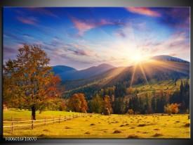 Glas schilderij Natuur | Bruin, Geel, Blauw